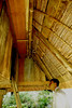 This picture shows a student peering inside the dark second level. There are no windows to this house as Ifugaos useit only at night. They use their stone cooking stove for light. The ladder is pulled up and the door is closed to prevent wild animals in getting into the house. The house is made of wood and bamboos. No nails are used, only wooden pegs and rattan to tie things together.