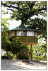 This beach house is a tree house although it has two wood post to prevent it from twisting around. This has the same construction as the other cottages in La Iya Beach, Batangas Province.