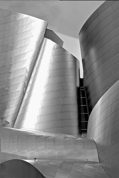 This building was designed by Frank O. Gehry, Architect. The same architect who designed the Bilbao Museum in Spain. Because of its varying planes of stainless steel siding, this building is a good photo opportunity for all. I decided to make it black and white picture because the stainless steel siding is already gray and it turns bluish in picture like the sky. B & W came out more interesting. The concert hall is on 111 South Grand Street, in downtown Los Angeles.