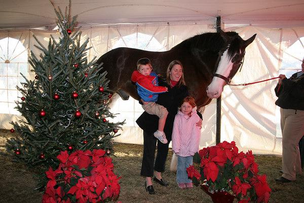 Saturday, December 9, 2006