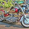 BRADMcDONALD-CUSTOM BIKE EX PO2010-0088