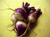 fall_turnips