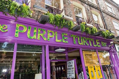 London Blues Festival on Tour at The Purple Turltle Reading. .