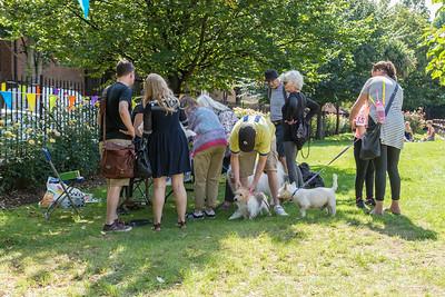 ClerkenwellFestival2017_DogShow-001