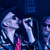 TheAlabama3_Tunnel267_Wimbledon_Jan2017-038