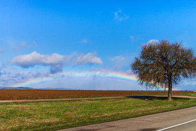 Full colorful rainbow over the meadow panoramic view