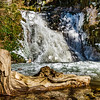 Old wooden timber in the water of mountain waterfall