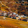 Tilt-shift aerial view of autumnal vineyards in Switzerland