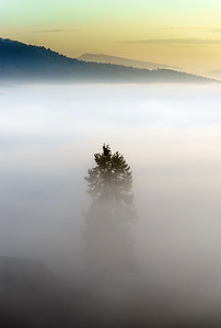 Majestic fog ocean in the mountains on sunset
