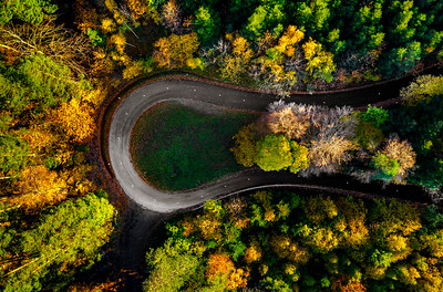 Zigzag road, framed by orange autumn forest. Serpentine climbs the Vosges mountains in Alsace.