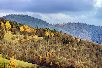 Beautiful autumn colors in mountains, landscape natural view