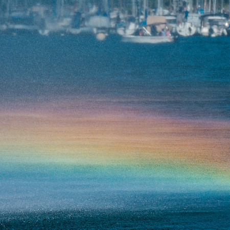 The water spray creates a stunning, beautiful rainbow over the surface of the water.