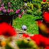 Beautiful colorful garden near the village house