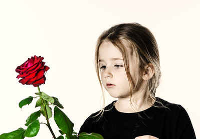Cute little girl portrait with red rose