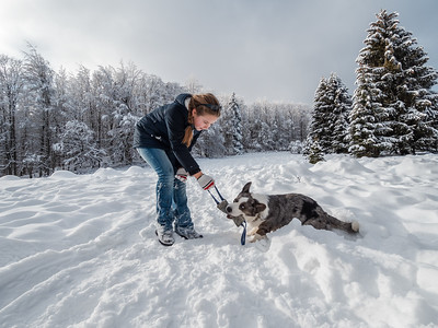 A girl plays with a corgi dog in a snowy forest. Sunlight. Winter's tale.