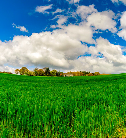Beautiful rural landscape with vivid green field and white clouds on blue sky