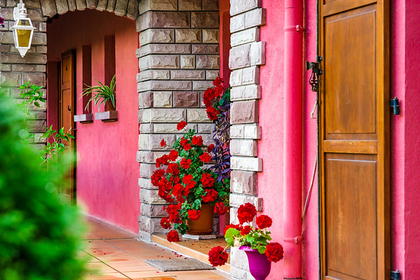 Village house entrance decorated by flowers