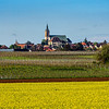 Beautiful yellow fields of colza, bio fuel component, agriculture in France