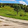 Beautiful road in green fields, natural landscape