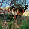 Handmade hobbit house for children on the tree