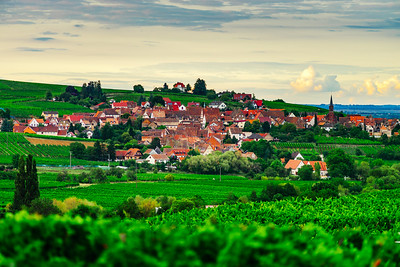 Landscape of Alsace, vineyards and villages, sunset time, France