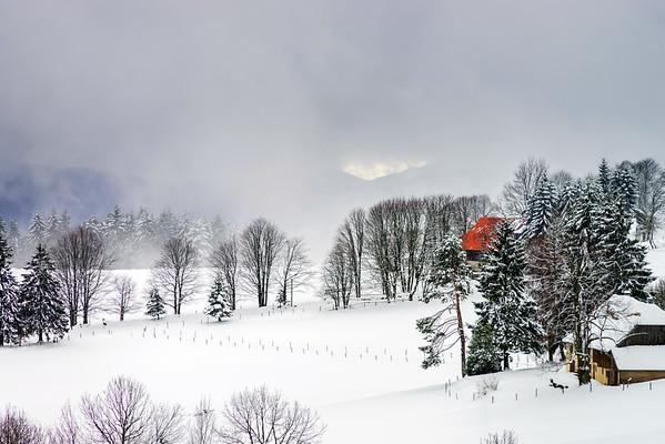 Beautiful winter snowy landscape with fog