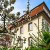 Classic french house in residential district of Strasbourg, blossom spring time, flowering and gardening.