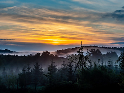 Colorful sunrise in Vosges mountains. Fog and forest silhouettes. Alsace. France.