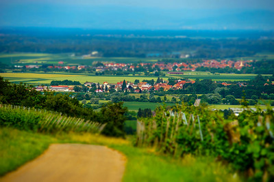 Miniature view of village and fields in Alsace, France