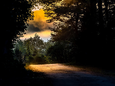 Sun bems through the fog at sunset time