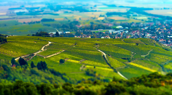 Aerial panoramic tilt-shift view to village Ribeauville from drone
