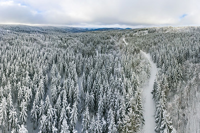 Panoramic view from drone of snowy forest in Vosges mountains, Alsace, France.