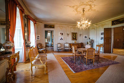 Beautiful rich classic interior of XIX century