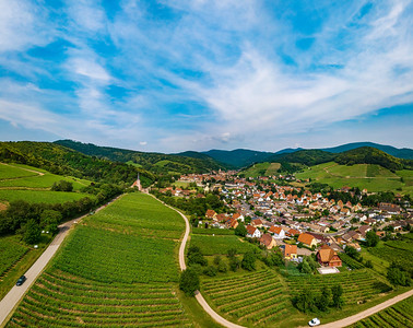 Green vineyards aerial view from drone. Wide panoramic photography. Andlau, Alsace, France.