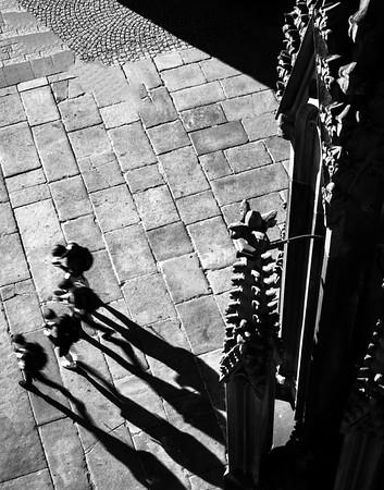Gargoyles and details of the external decoration of the Cathedral in Strasbourg. View from above.