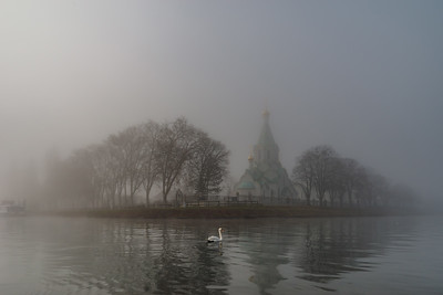 Orthodox church in the winter fog and swan swimming infront of