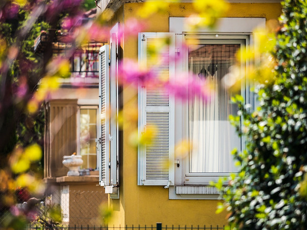 Cozy garden near the house with beautiful windows and shutters. Calmness and comfort.