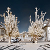 Panoramic infrared view of city place with beautiful trees