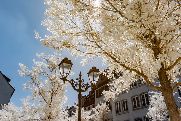 Retro-style street lamp and trees in infrared view