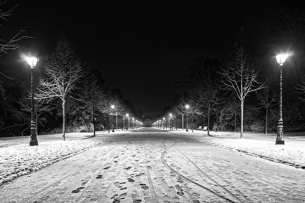 Night in the park after snowfall. White road, benches, street lamps highlighting alley. Strasbourg