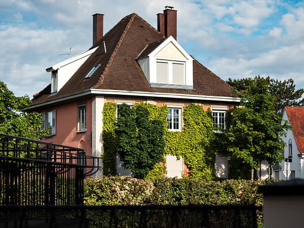 A beautiful house entwined with fresh spring ivy. The comfort and coziness of the old quarters
