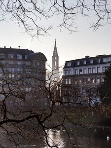 View of the Cathedral in Strasbourg in winter through the branches of trees with autumn leaves