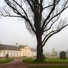 Empty winter park with fog in Strasbourg
