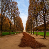 The stunning colors of a Luxembourg garden in Paris in autumn, fallen leaves and an atmosphere of beauty.