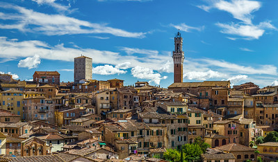 Old medieval city of Siena panoramic view. Classic italian cityscape with many little houses, red roofs, bright sunlight. Italy.