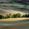 Autumn in Italy. Yellow plowed hills of Tuscany with interesting shadows and lines