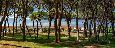 Discovering Tuscany and the Maremma Natural park known as Uccellina Park, a stunning natural reserve and protected wildlife area along the coast of the Tyrrhenian Sea.