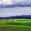 Beautiful green hills in Tuscany
