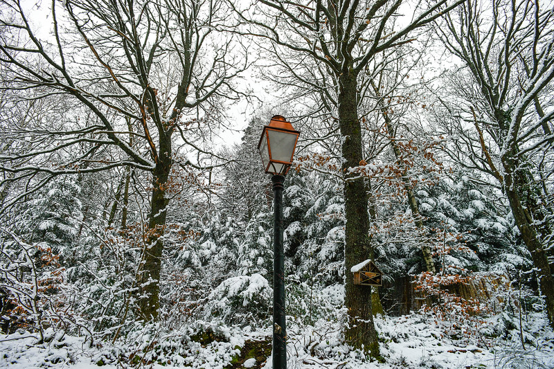 Golden street lamp in snowcovered public park