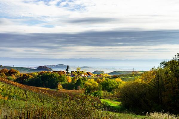 Beautiful landscape of alsacien hills with vineyards